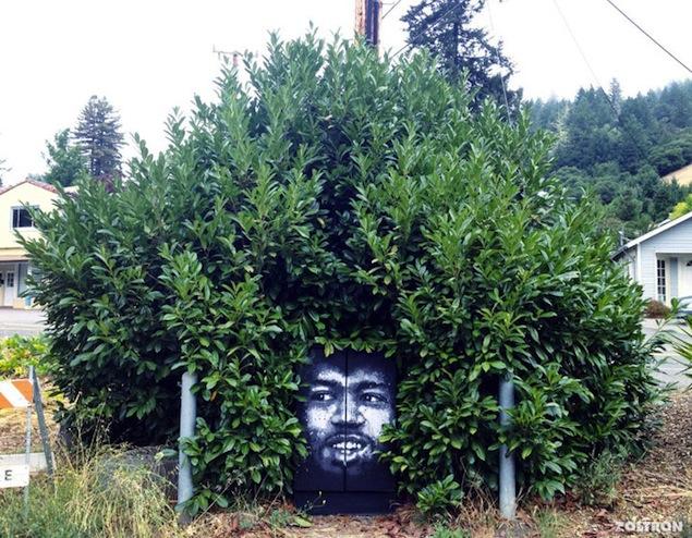 street art et nature 1
